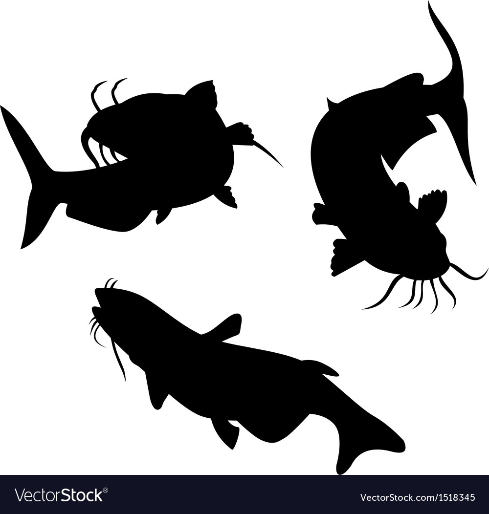 Catfish silhouette vector | Price: 1 Credit (USD $1)