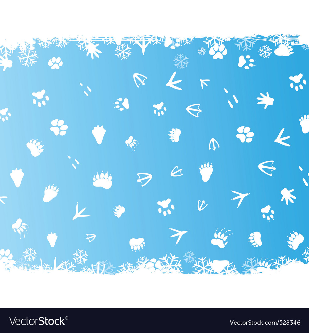Animal prints in snow vector | Price: 1 Credit (USD $1)