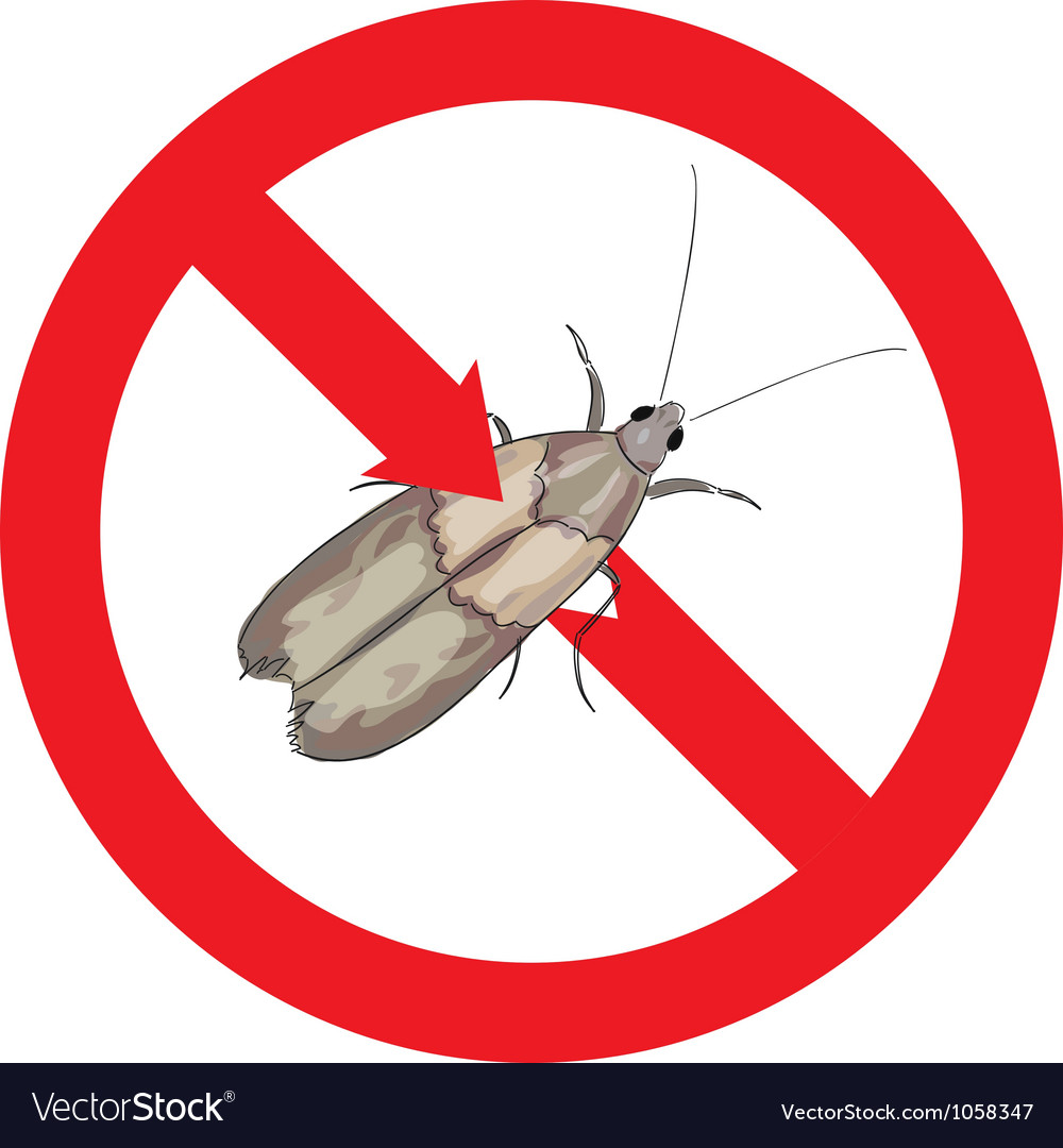 Moth pest is prohibited vector | Price: 1 Credit (USD $1)