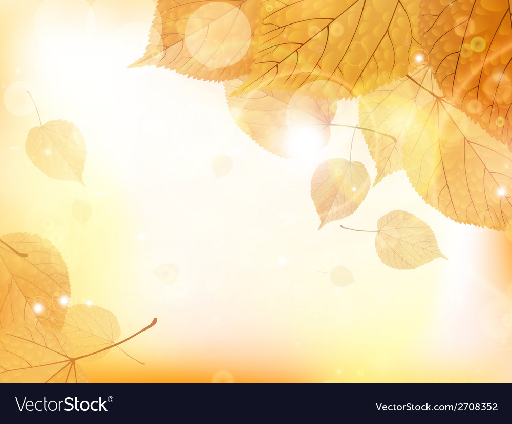 Autumn design background with leaves vector | Price: 1 Credit (USD $1)