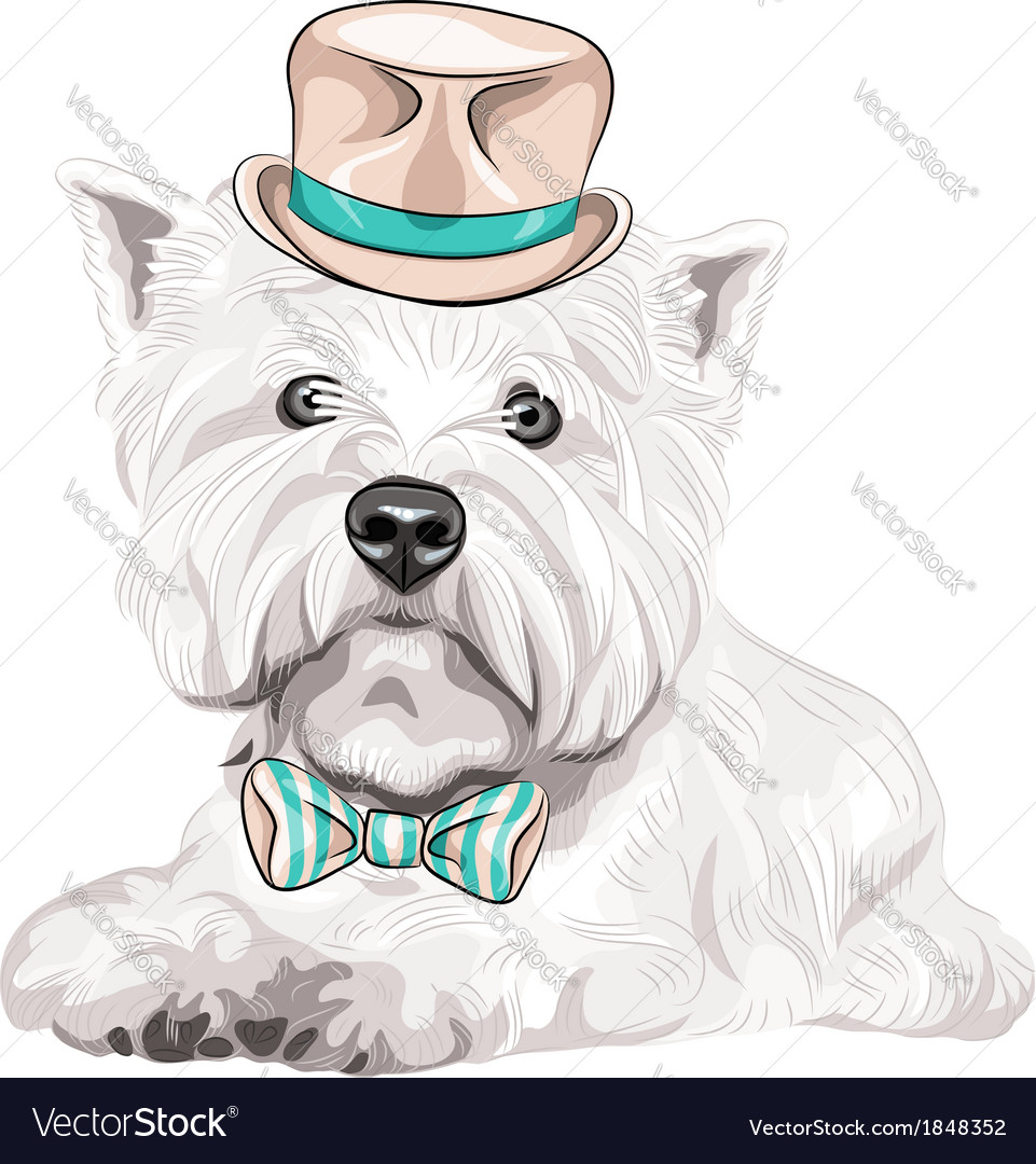 Hipster dog west highland white terrier vector | Price: 3 Credit (USD $3)