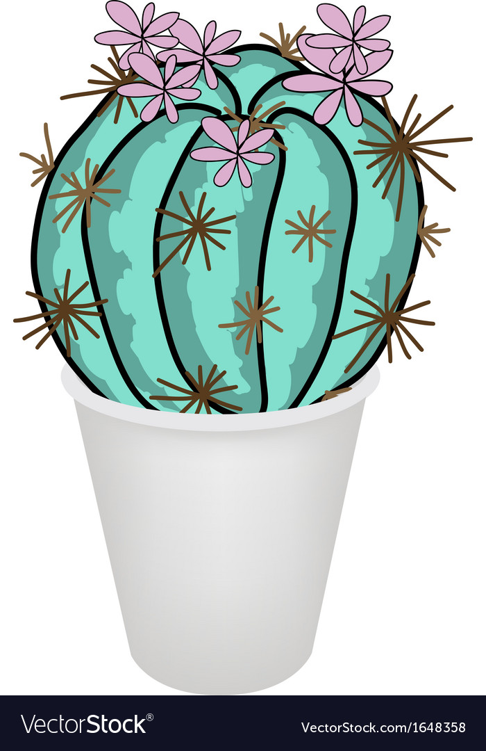 Cactus plant and pink flower in a flowerpot vector | Price: 1 Credit (USD $1)
