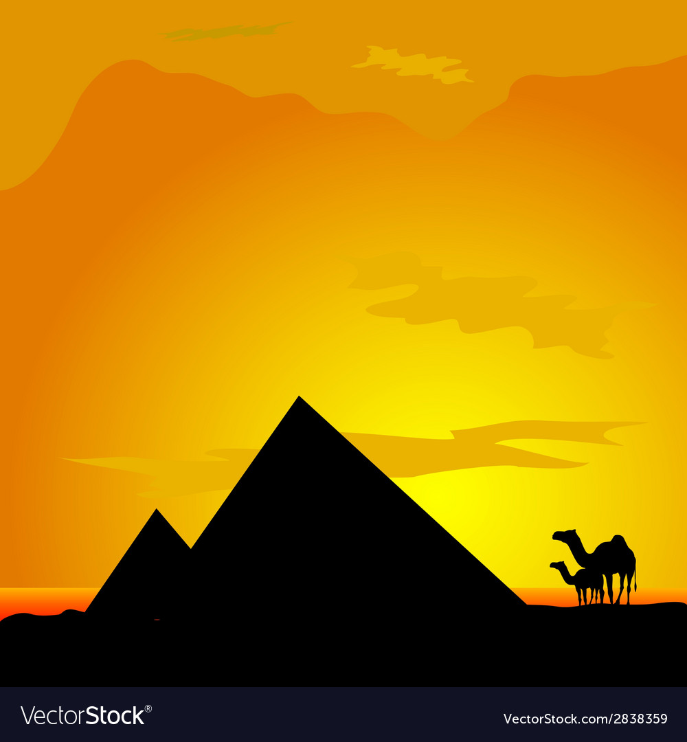 Camels with pyramide in desert vector | Price: 1 Credit (USD $1)