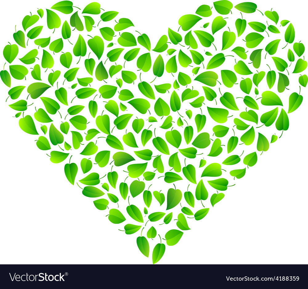 Heart made of fresh green leaves vector | Price: 1 Credit (USD $1)