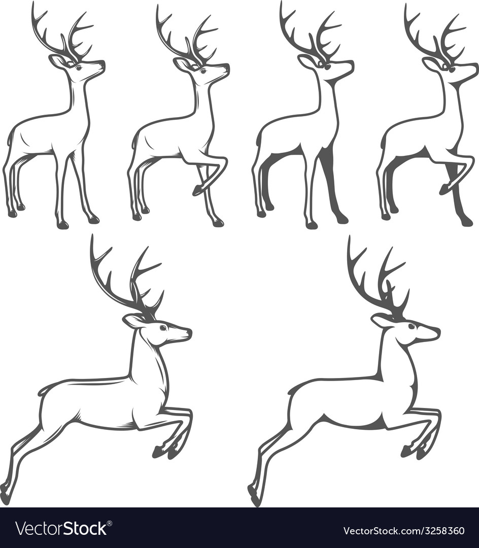 Christmas reindeer in different poses vector | Price: 1 Credit (USD $1)