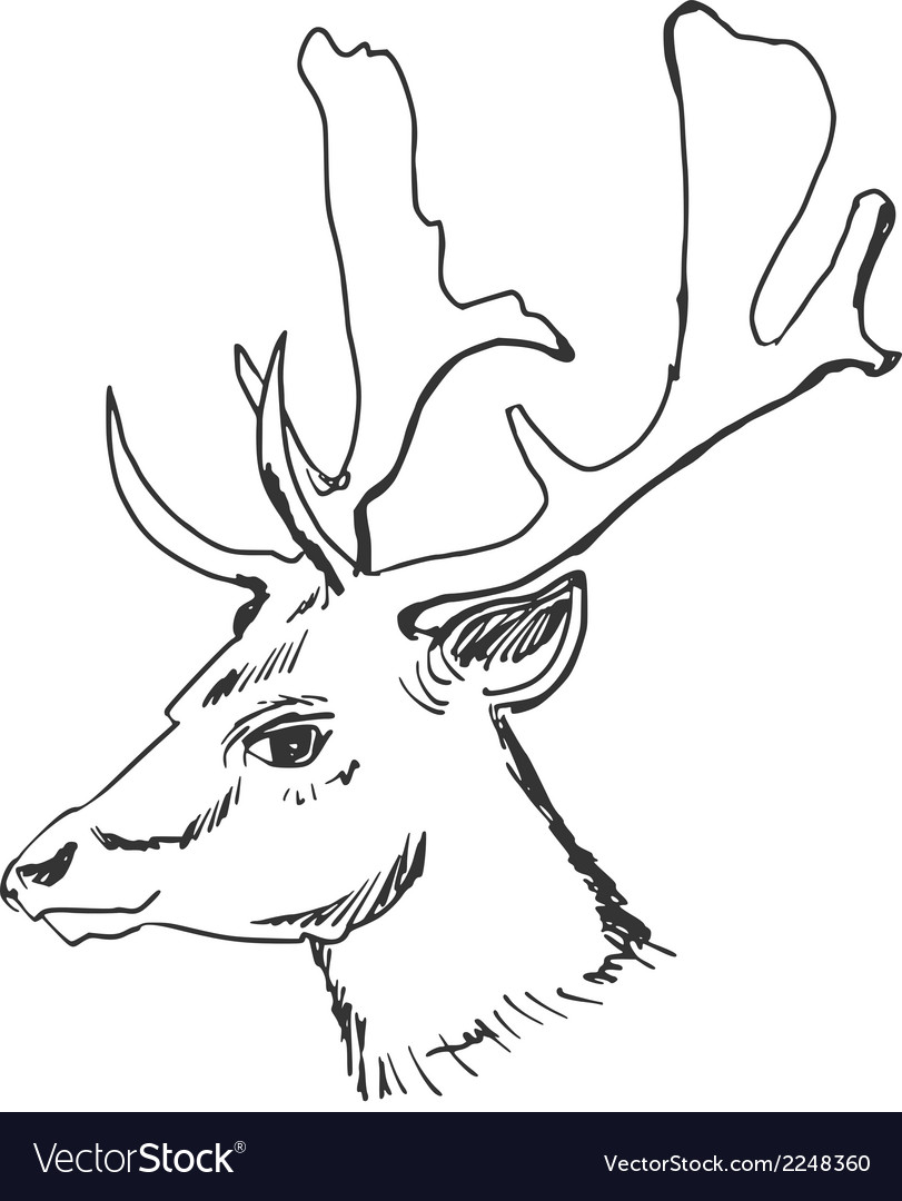 Deer vector | Price: 1 Credit (USD $1)