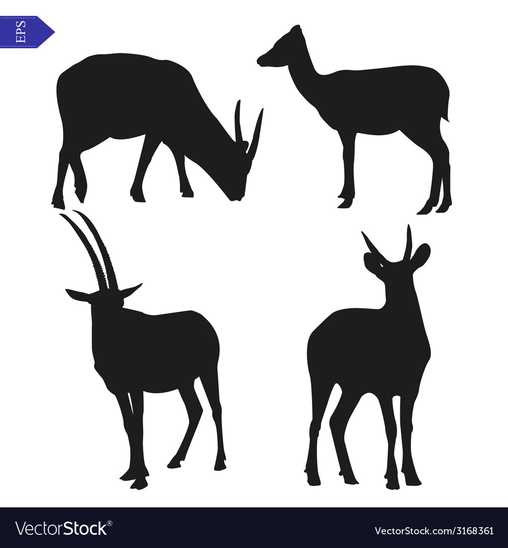 Silhouettes of wild goats vector | Price: 1 Credit (USD $1)