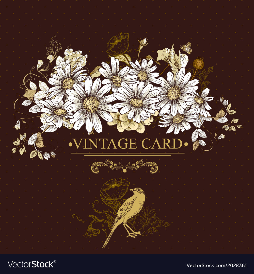 Vintage floral card with birds and daisies vector | Price: 1 Credit (USD $1)
