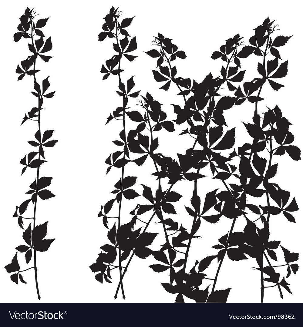 Shrub silhouette vector | Price: 1 Credit (USD $1)
