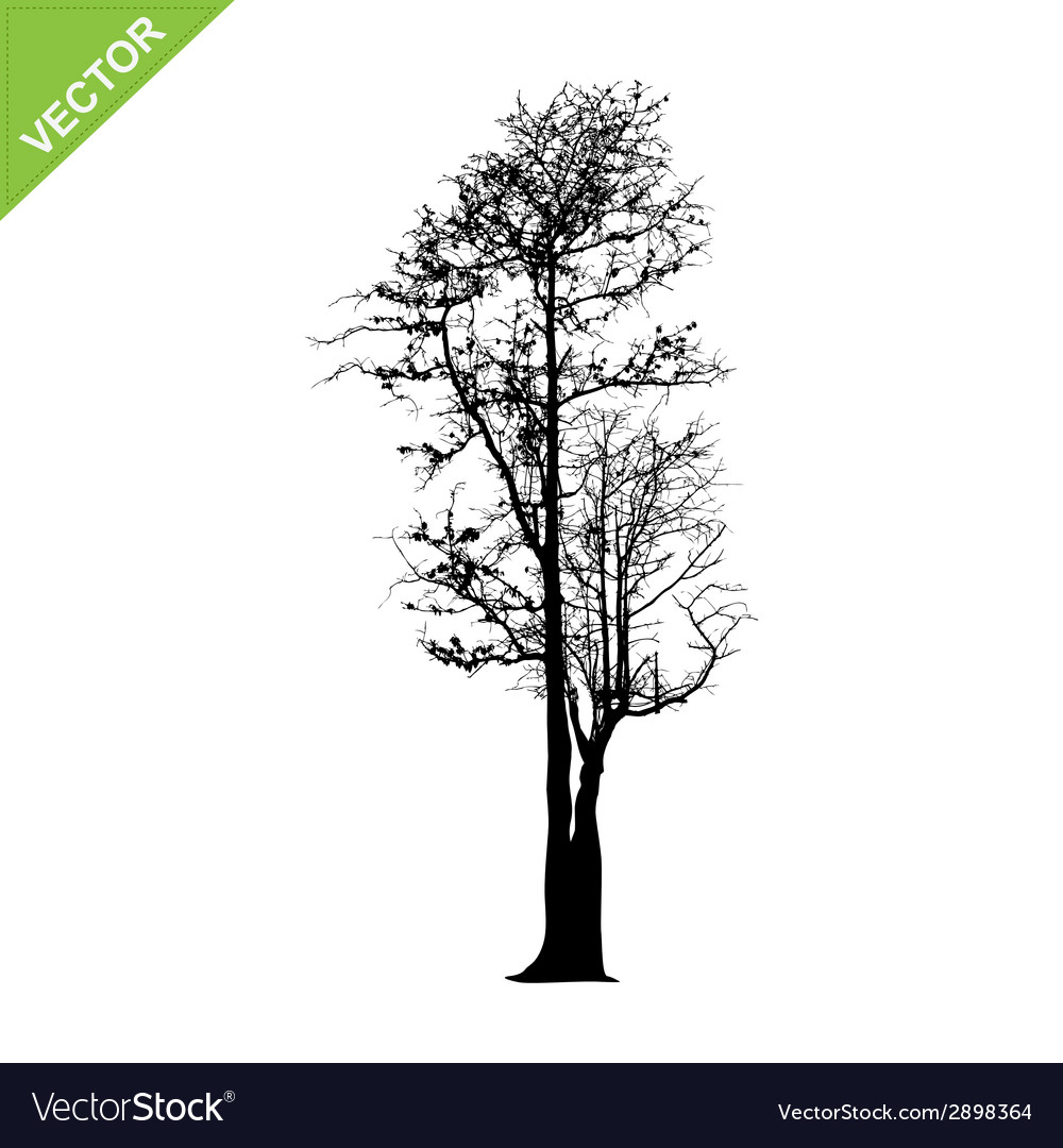 Dead tree silhouettes vector | Price: 1 Credit (USD $1)