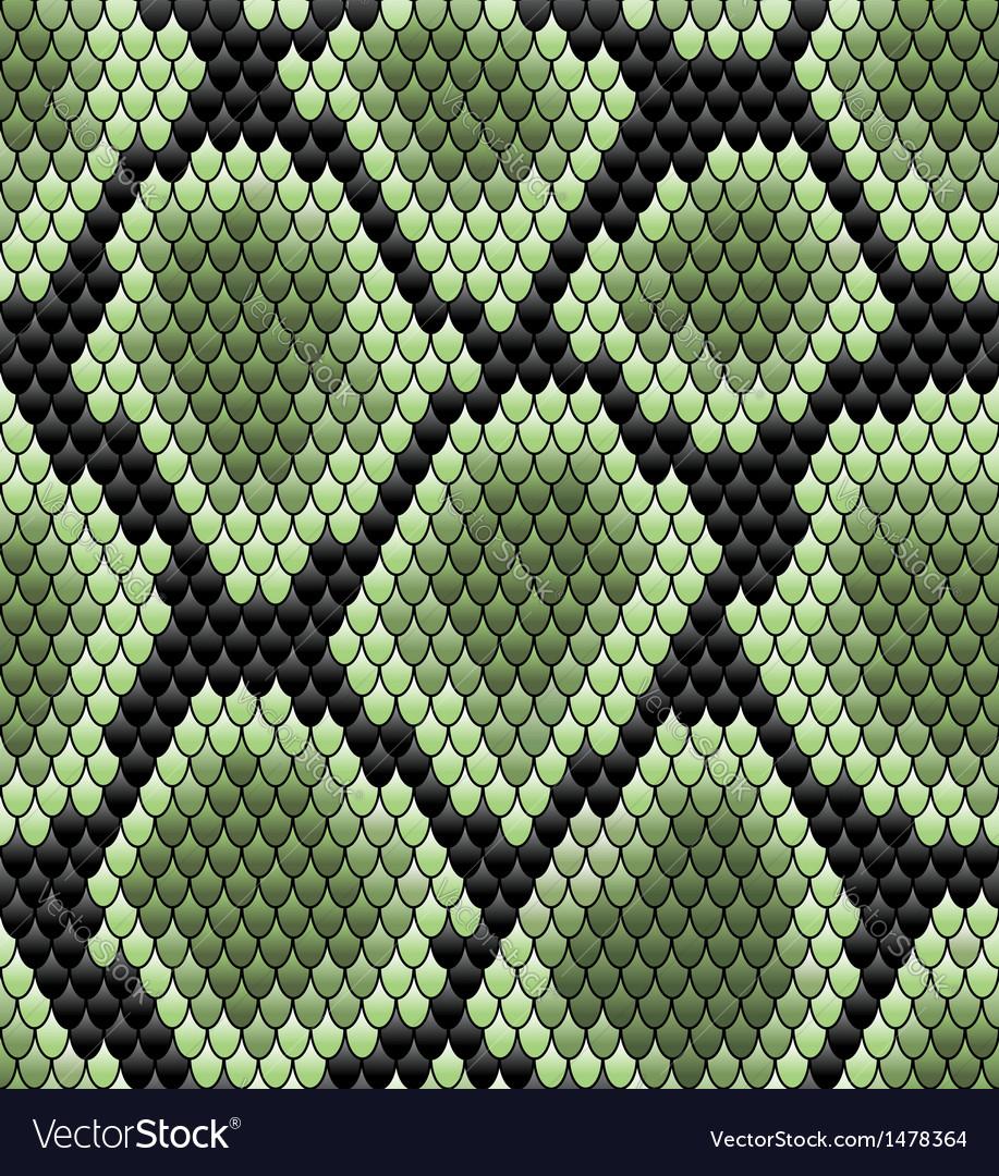 Green seamless snake skin pattern vector | Price: 1 Credit (USD $1)