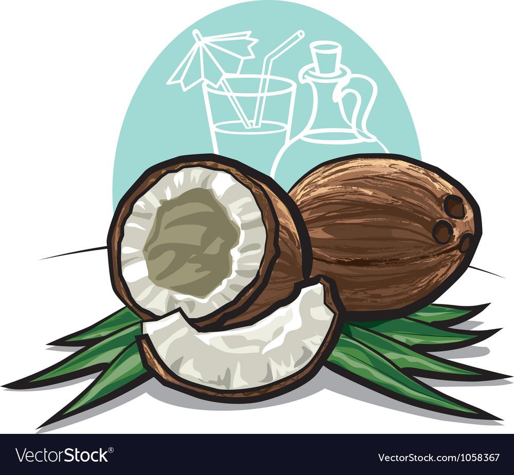 Coconuts vector | Price: 3 Credit (USD $3)