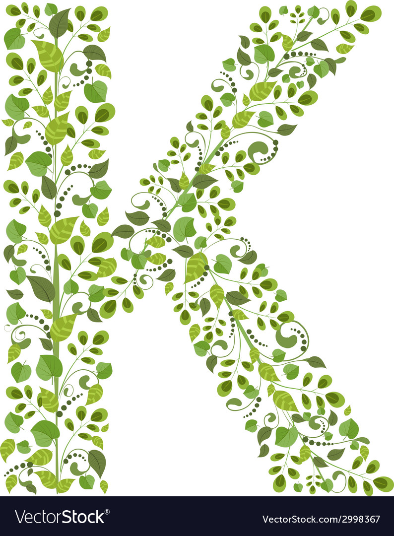 Spring green leaves eco letter k vector | Price: 1 Credit (USD $1)