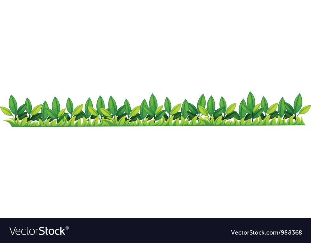 Grass bar border vector | Price: 1 Credit (USD $1)