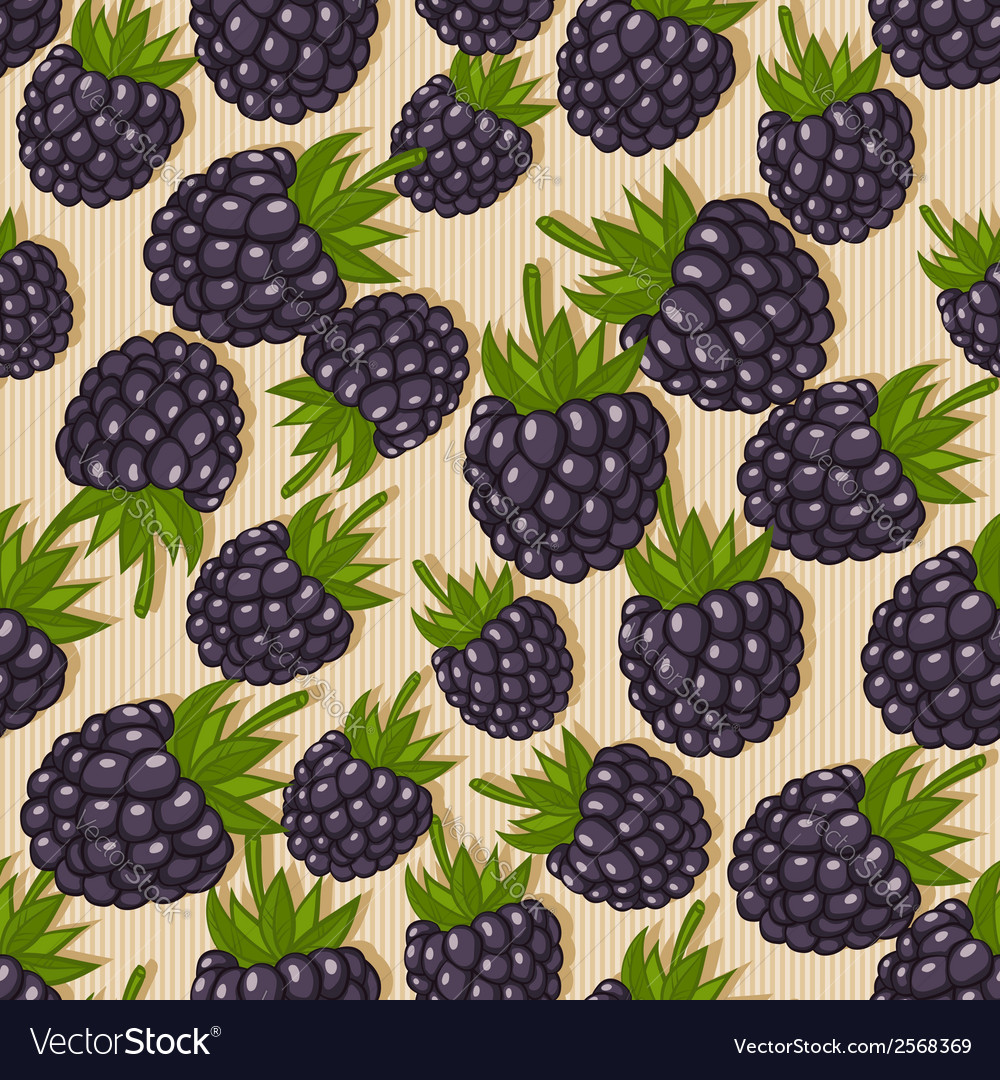 Blackberry seamless pattern vector | Price: 1 Credit (USD $1)