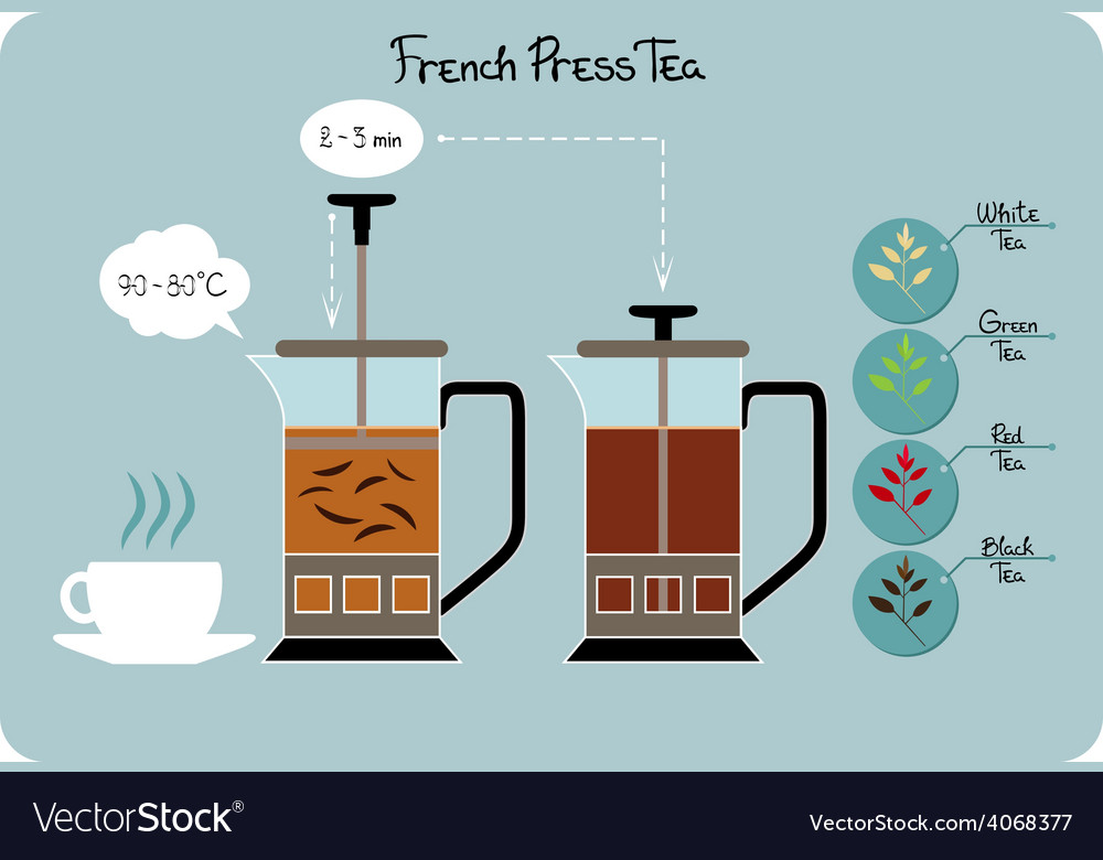 French presstea vector | Price: 1 Credit (USD $1)
