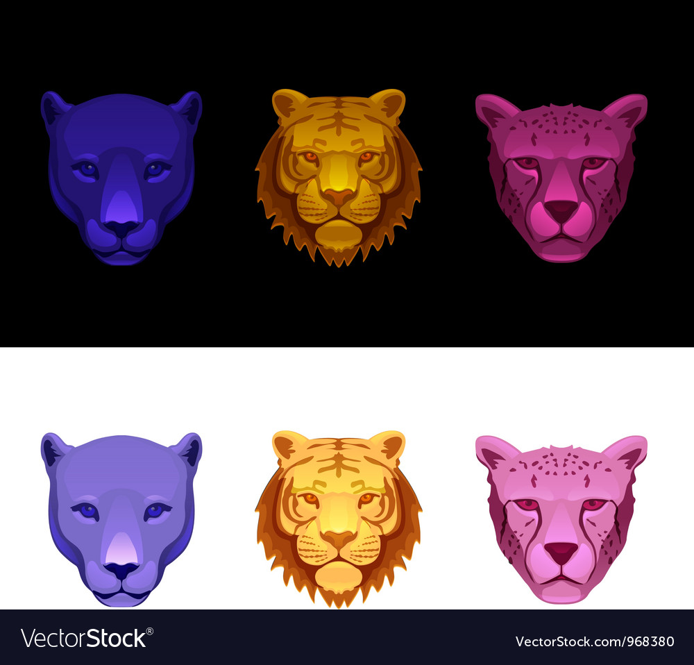 Big cat set-tiger cheetah panther vector | Price: 1 Credit (USD $1)