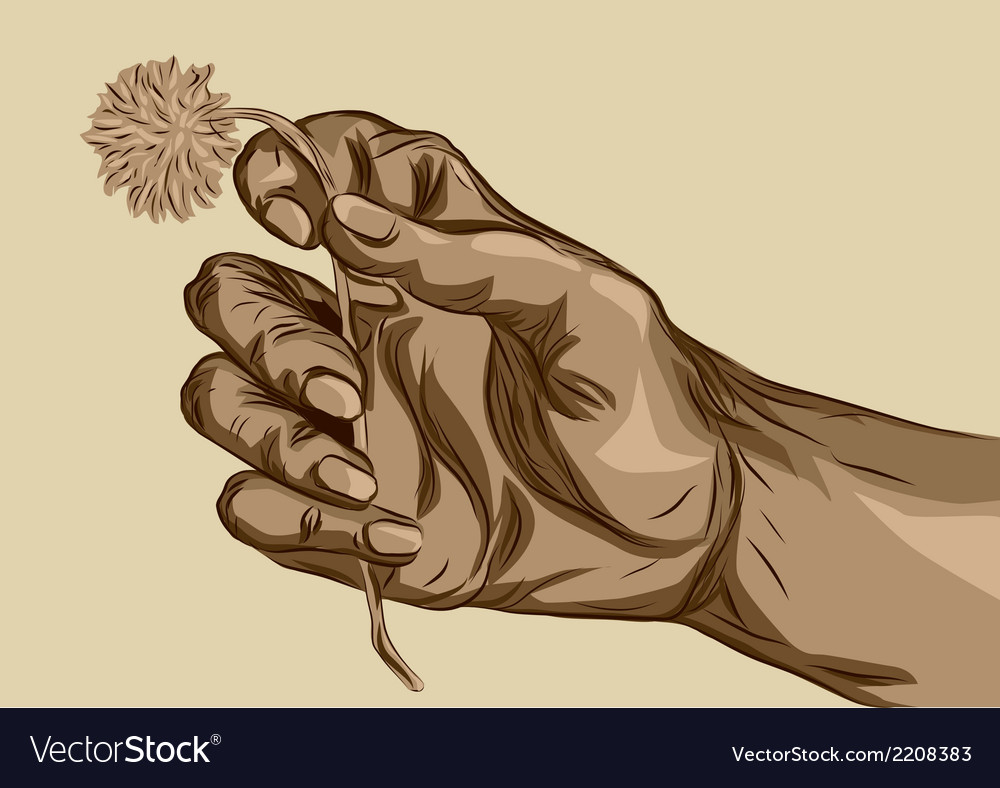 Hand holding flower vector | Price: 1 Credit (USD $1)