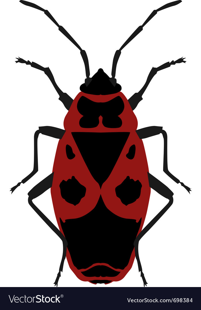 Beetle soldier vector | Price: 1 Credit (USD $1)