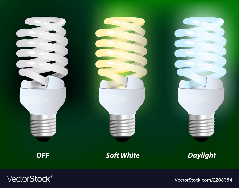 Compact fluorescent lamp vector | Price: 1 Credit (USD $1)