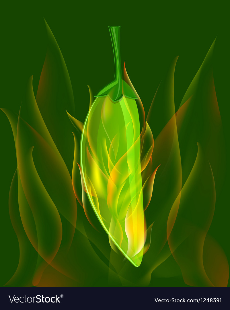 Red chili pepper in fire vector | Price: 1 Credit (USD $1)