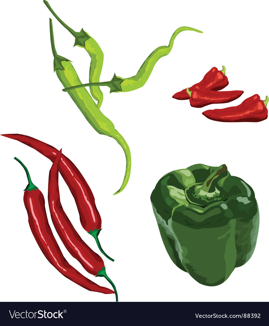 Peppers vector | Price: 1 Credit (USD $1)