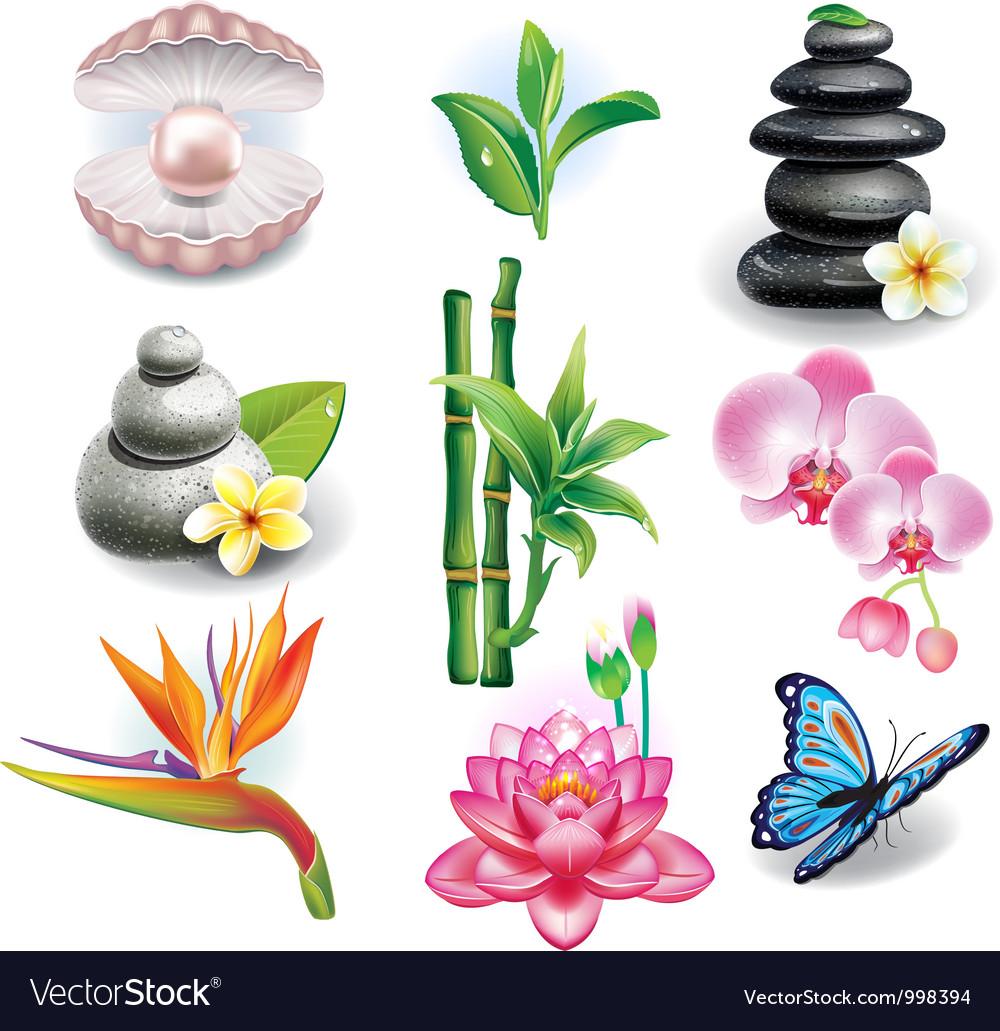 Set of spa symbols vector   Price: 3 Credit (USD $3)