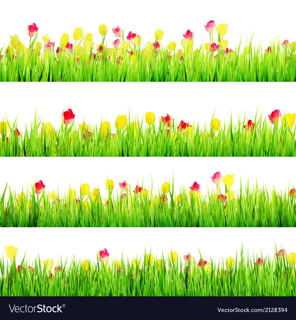 Spring meadow with white eps 10 vector | Price: 1 Credit (USD $1)