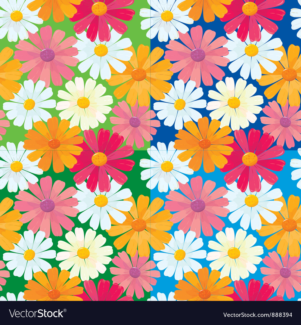 Textures daisy flowers vector | Price: 1 Credit (USD $1)