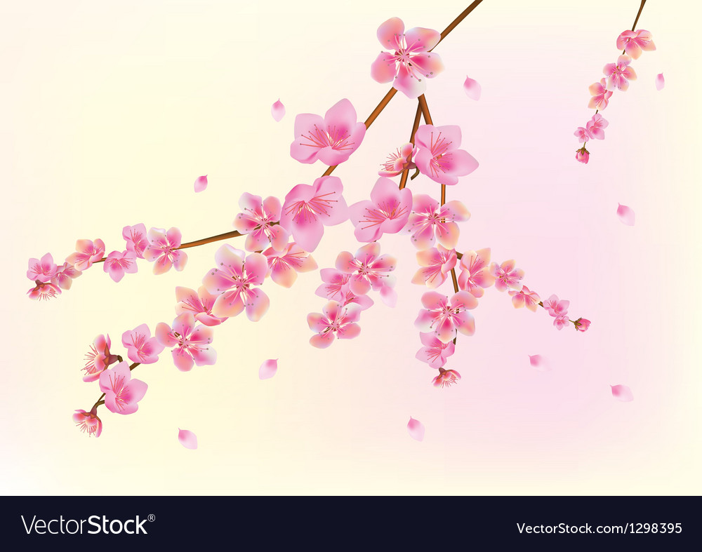 Spring all wakes up flowers sakura vector | Price: 1 Credit (USD $1)