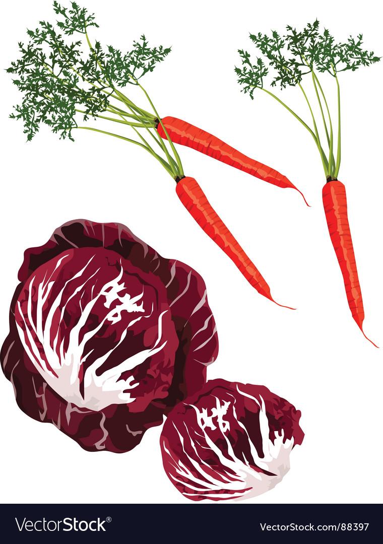 Mix vegies vector | Price: 1 Credit (USD $1)