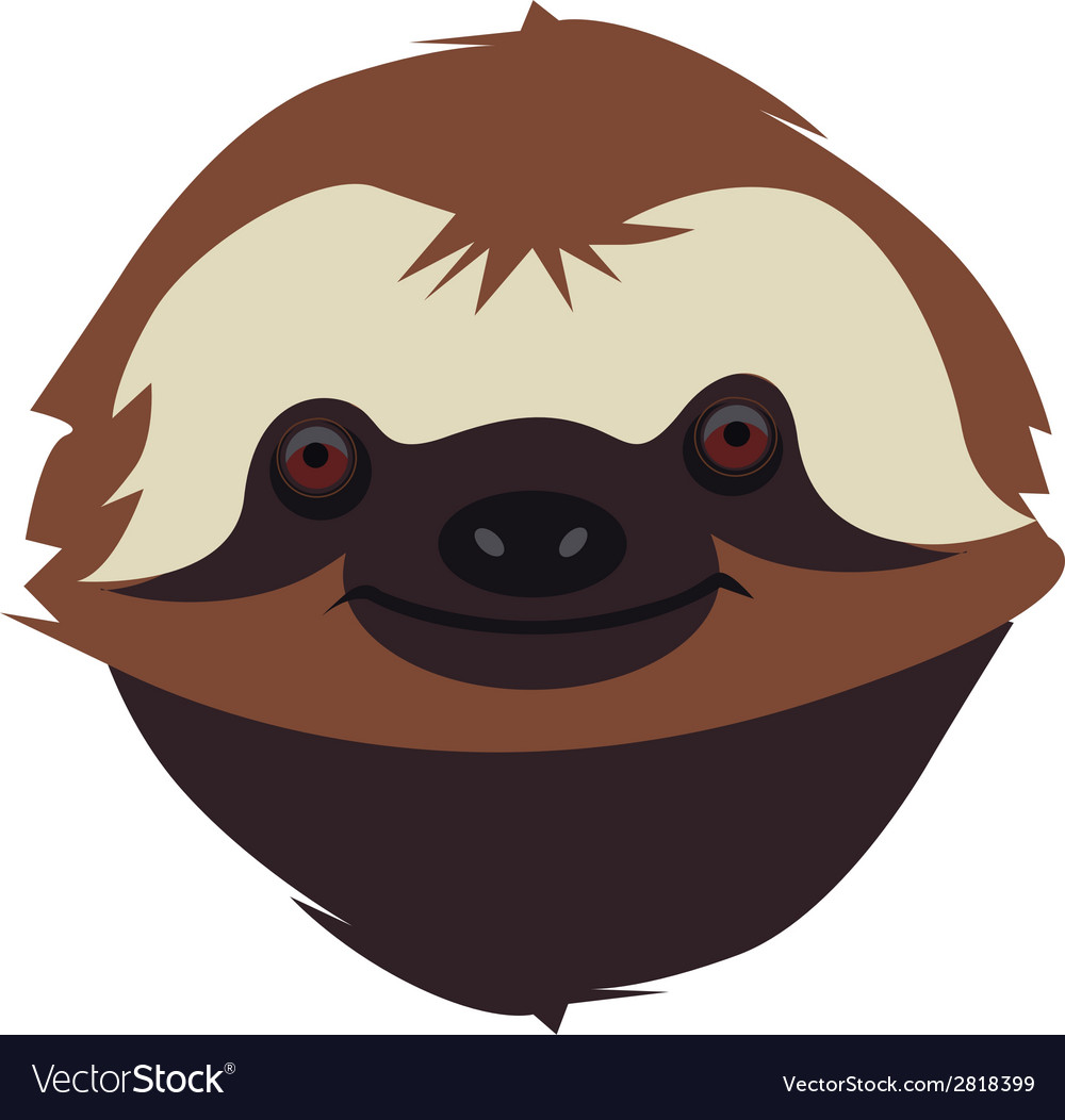 Sloth muzzle vector | Price: 1 Credit (USD $1)