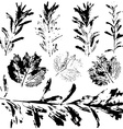 Set of prints black leaves on a white background vector
