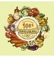 Vegetables sketch background vector