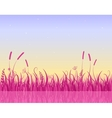 Misty morning on lake with pink grass silhouette vector