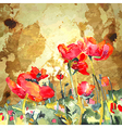 Original watercolor poppy flower in gold backgroun vector