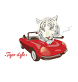 White tiger style red car vector