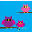 Three cute owls and cloud card vector