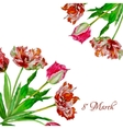 Background with bouquet of tulips2-03 vector