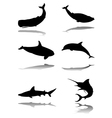 Marine animals vector