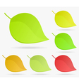 Stylized leaves vector