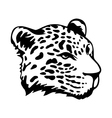 Tribal jaguar vector