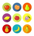 Set round icons with fruit vector