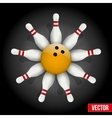 Bowling pins and ball with a flower vector