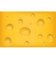 Cheese texture vector