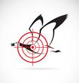 Image of a wild duck target vector