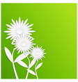 Abstract white paper flowers vector