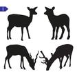 Silhouettes of deer vector
