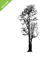 Dead tree silhouettes vector