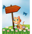 An orange cat with a wooden arrow board vector